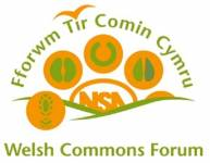 Welsh Commons Forum