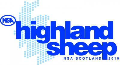 NSA Highland Sheep