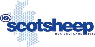 NSA Scotsheep