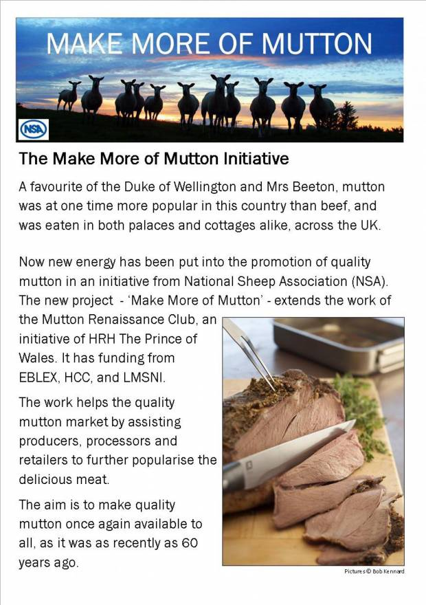 Background leaflet to the Make More of Mutton Initiative