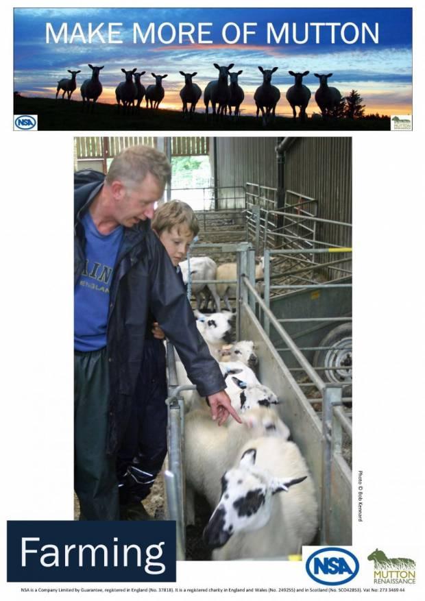 MMOM Farming Poster