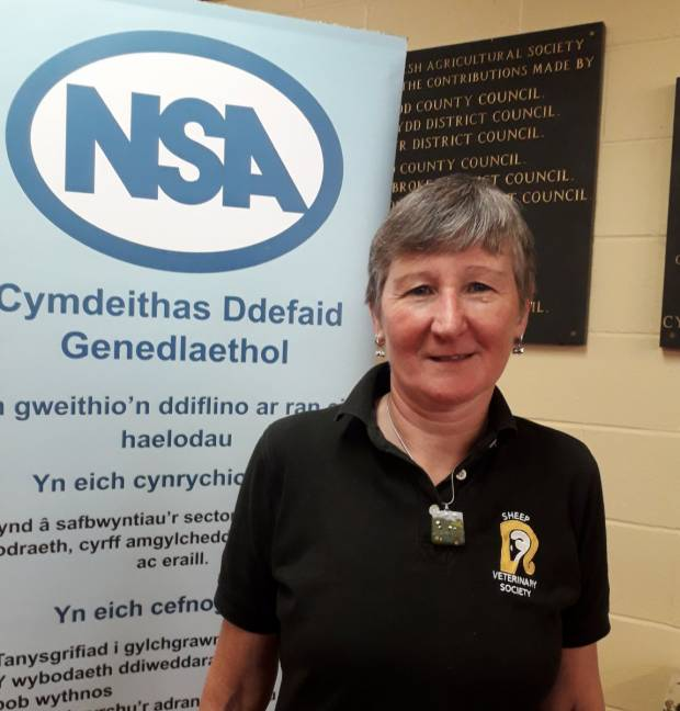 New NSA Cymru / Wales Region Chair Kate Hovers