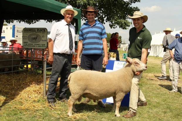 A Charollais ram sold at the event raised £550 for the farming Community Network