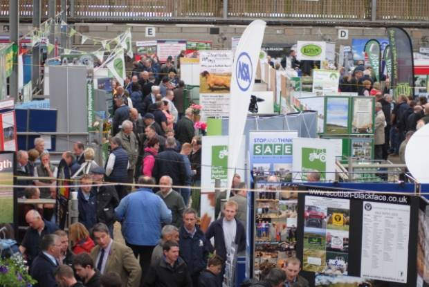 The busy event transformed Ballymena Mart into a 'exhibition of excellence' for the sheep sector.