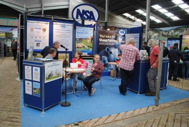 The NSA stand