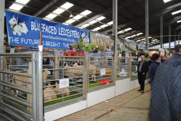 Bluefaced Leicester Sheep Breeders Association, Winners of the Breed Society stand competition