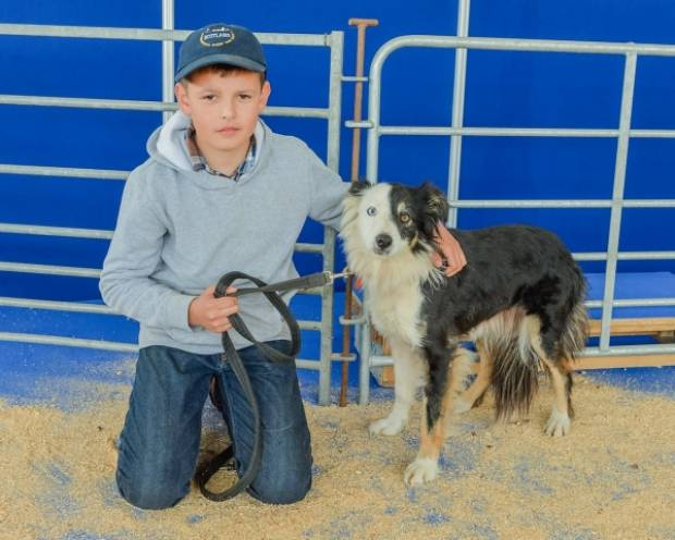 Twelve year old, Joe MacKenzie from Turriff, Aberdeenshire, came out top  in the sheep dog trials for young handlers with his dig, Twedie