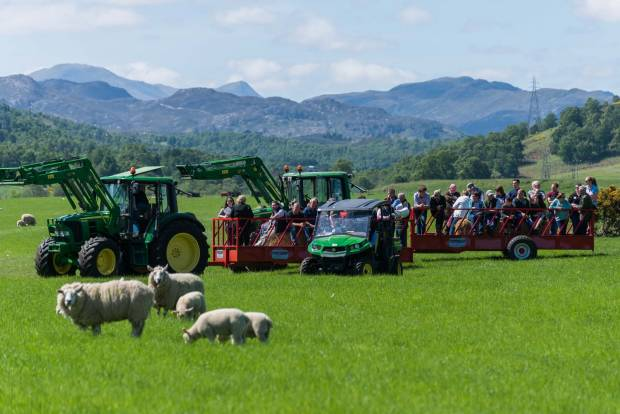 Visitors enjoy the farm tour