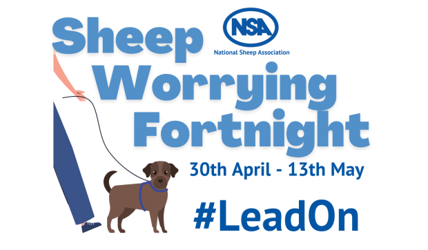 #LeadOn Workshop: Rural crime – positive way to work with the police on sheep worrying cases