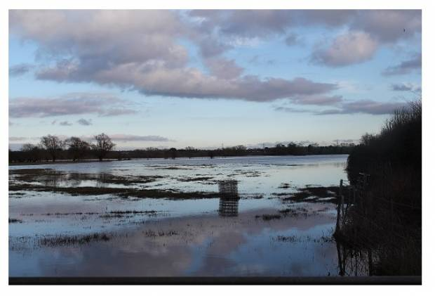 Sheep industry can play positive role in flood prevention