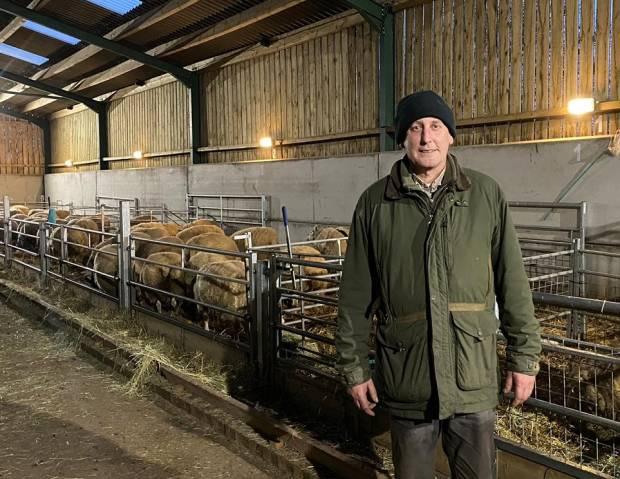 Established sheep breeder wins NSA membership