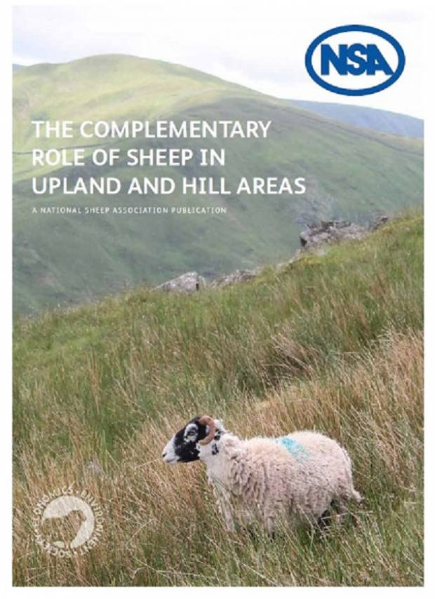 NSA highlights the complementary role of sheep in the upland and hill areas of the UK