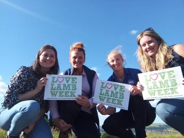 Calling all sheep farmers – Are you the new 'Face of Love Lamb'?