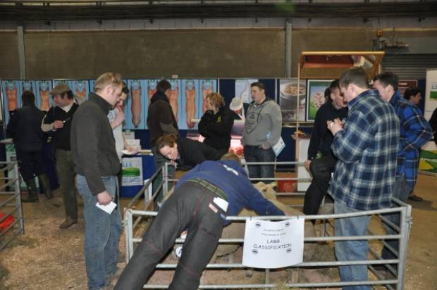 Stockjudging was a big attraction on the day.