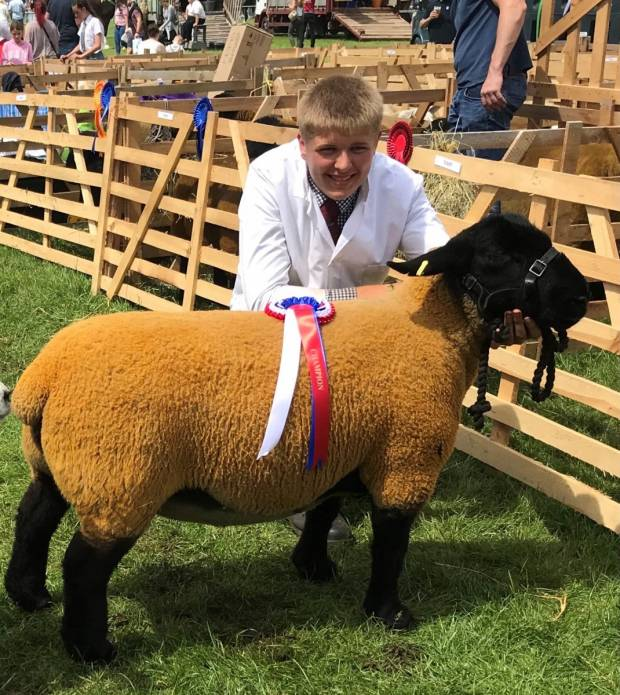 Next Generation Shepherds adapt to successfully complete competition.