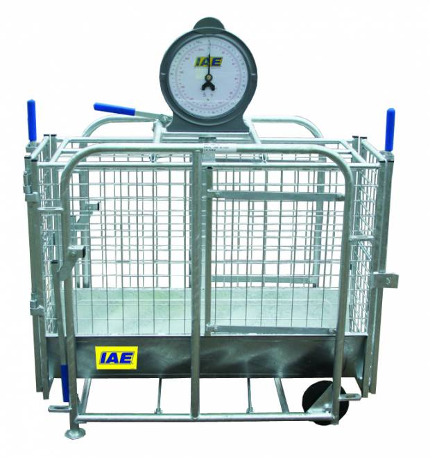 NSA to give away four lamb weigh crates before the end of the year