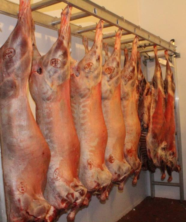 NSA respond to official notice from Defra on delay of carcase splitting regulation change