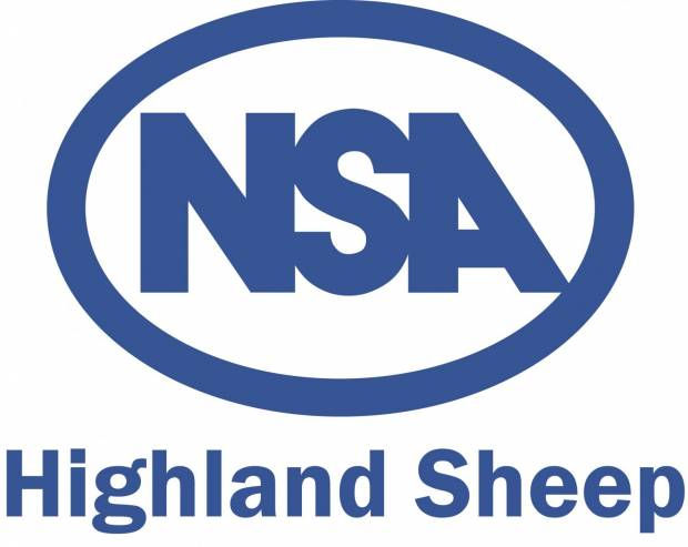 Show and sale of ewe hoggs a major feature of NSA Highland Sheep