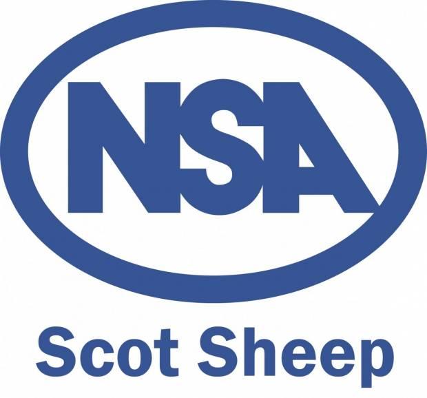All roads lead to NSA Scot Sheep