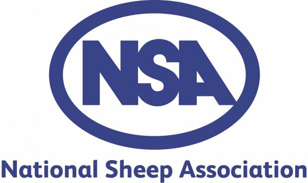 NSA responds to latest Lamb Watch figures