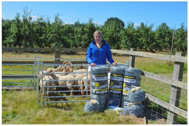 New sheep farmer benefits from NSA prize draw