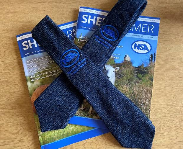 Show your support for British wool by proudly wearing one of NSA's attractive new ties