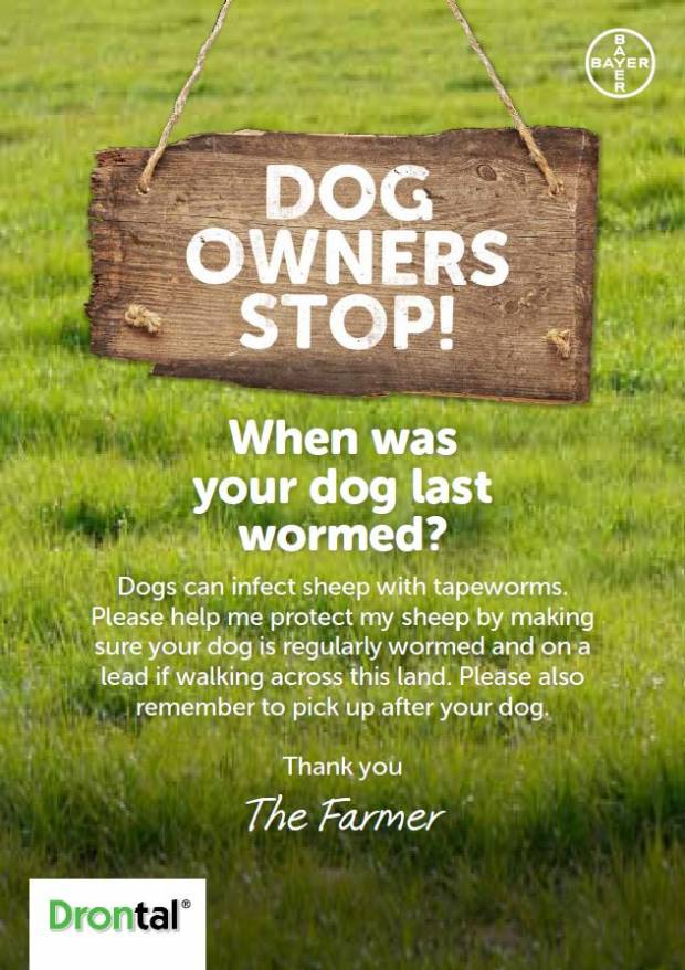 Download this poster, to encourage dog walkers to worm their dogs too.