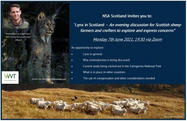 NSA Scotland - Lynx Webinar