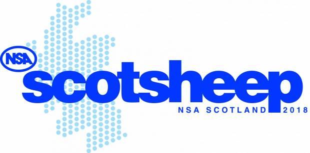 NSA Scotsheep 2018