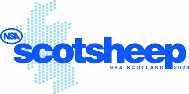 NSA Scotsheep 2020