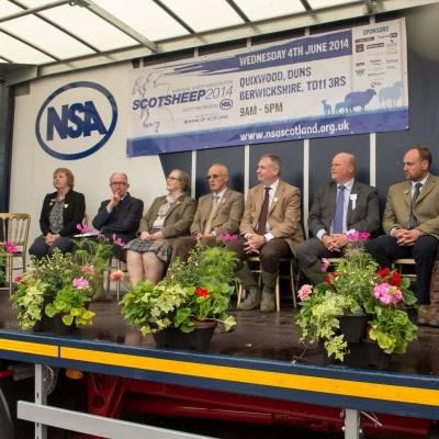 NSA Scot Sheep 2014