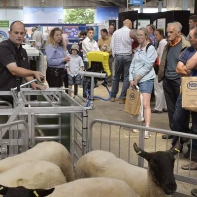 NSA Sheep Event 2014