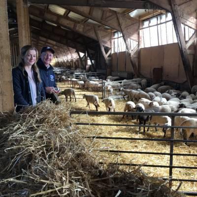 NSA NI Region visit to agricultural show Sommet de L'Elevage