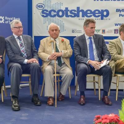 NSA Scot Sheep 2016