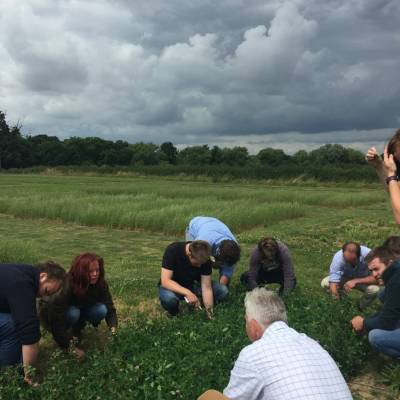 A visit to a grass breeding site with the NSA Next Generation Ambassadors.