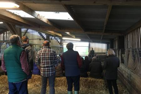 NSA South East Region and AHDB carcase losses event