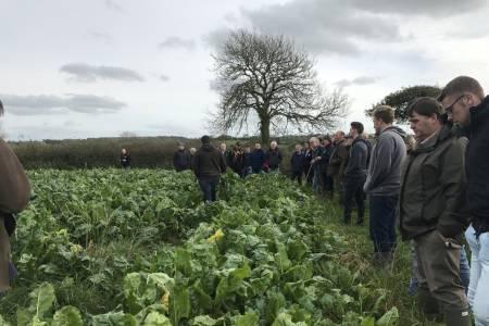 Farm Walk - NSA Cymru/Wales Region