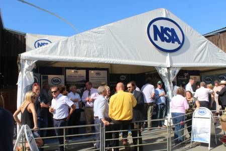 NSA Sheep Centre at Royal Welsh Show