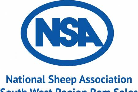 NSA South West Ram Sale