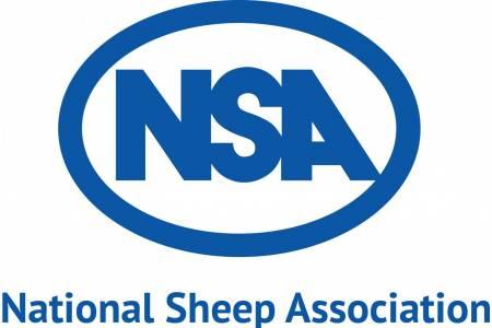 NSA Wales & Border Main Ram Sale