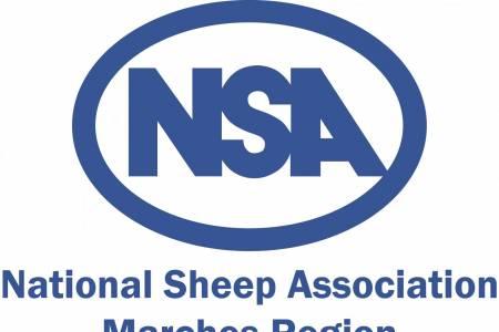 NSA Marches Region Christmas meeting