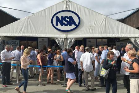 NSA Sheep Centre at the Royal Welsh Show