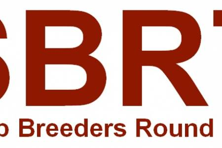 Sheep Breeders Round Table 2019
