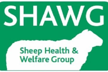 Sheep Health and Welfare Conference