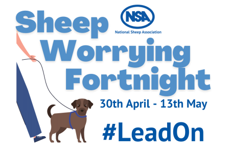 NSA Sheep Worrying Fortnight #LeadOn