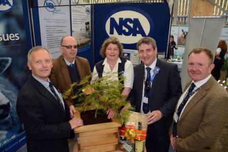 NSA Welsh Sheep 2019