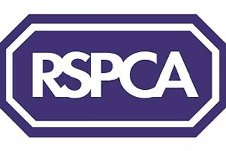 Advice from the RSPCA