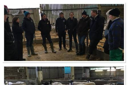 Sheep health and genetics focus for NSA Next Generation group