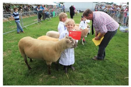 NSA Sheep Event supports aspiring young shepherds at Royal Three Counties Show