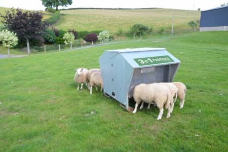 NSA to give away six specialist sheep feeders in 2014